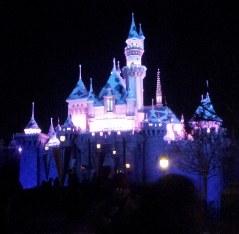 CHA2013_Disney3